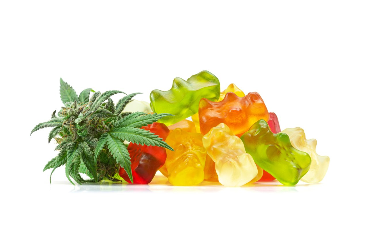 A pile of gummy bears made with cannabis extract next to a fresh bud or hemp flower. These medical marijuana edibles contain CBD and THC and are isolated on a white background.